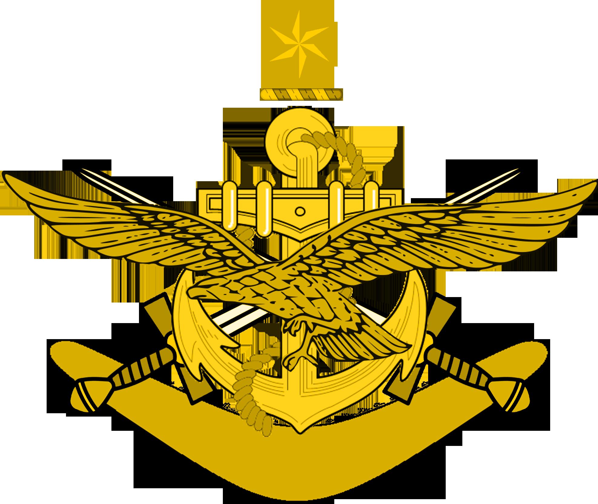 Cygnian Armed Forces (Joan of What?)