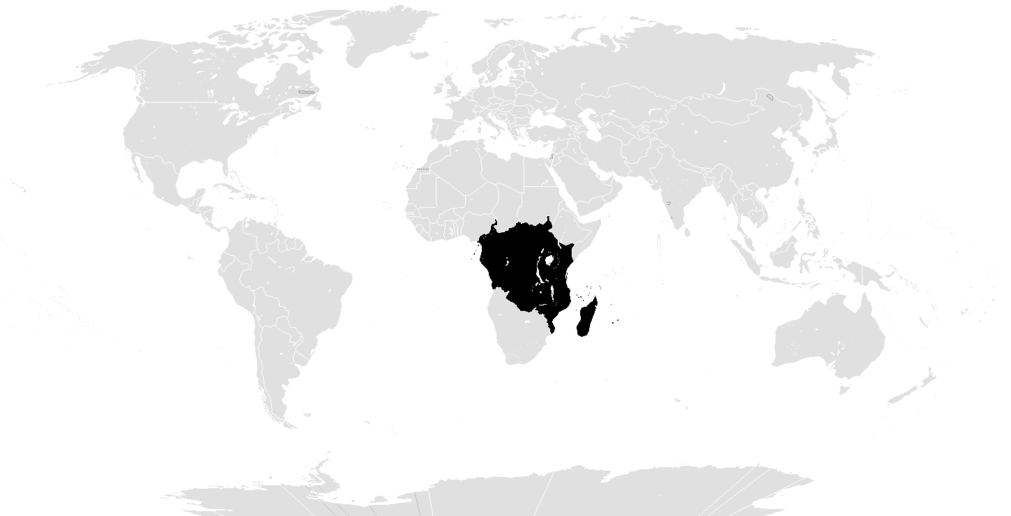 Example New Afrika.png