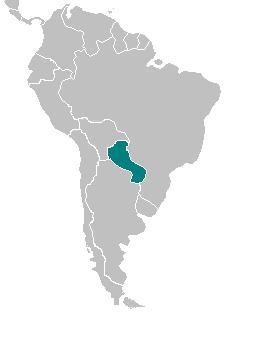 CNS Paraguay.png