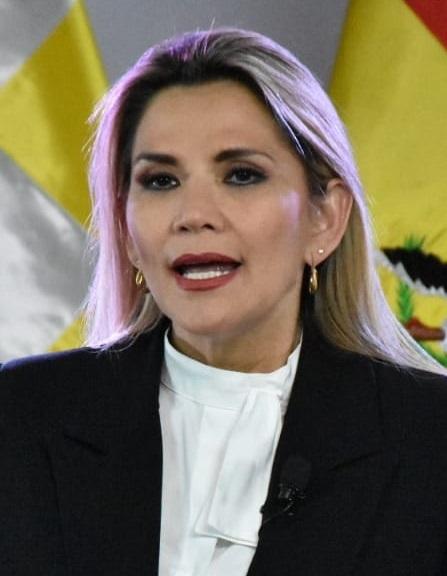 Elecciones Generales de Bolivia de 2021 (Chile No Socialista)