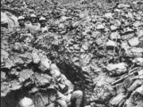 WW1 ( A Bloody Conflict)