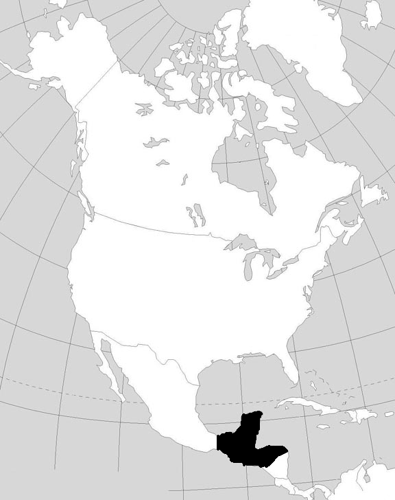 Mayan Empire (Early Colonization)