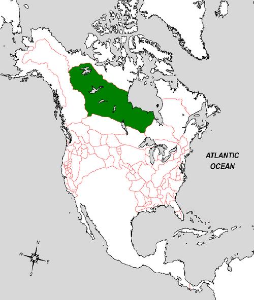 Keewatin Map (the Kalmar Union).png