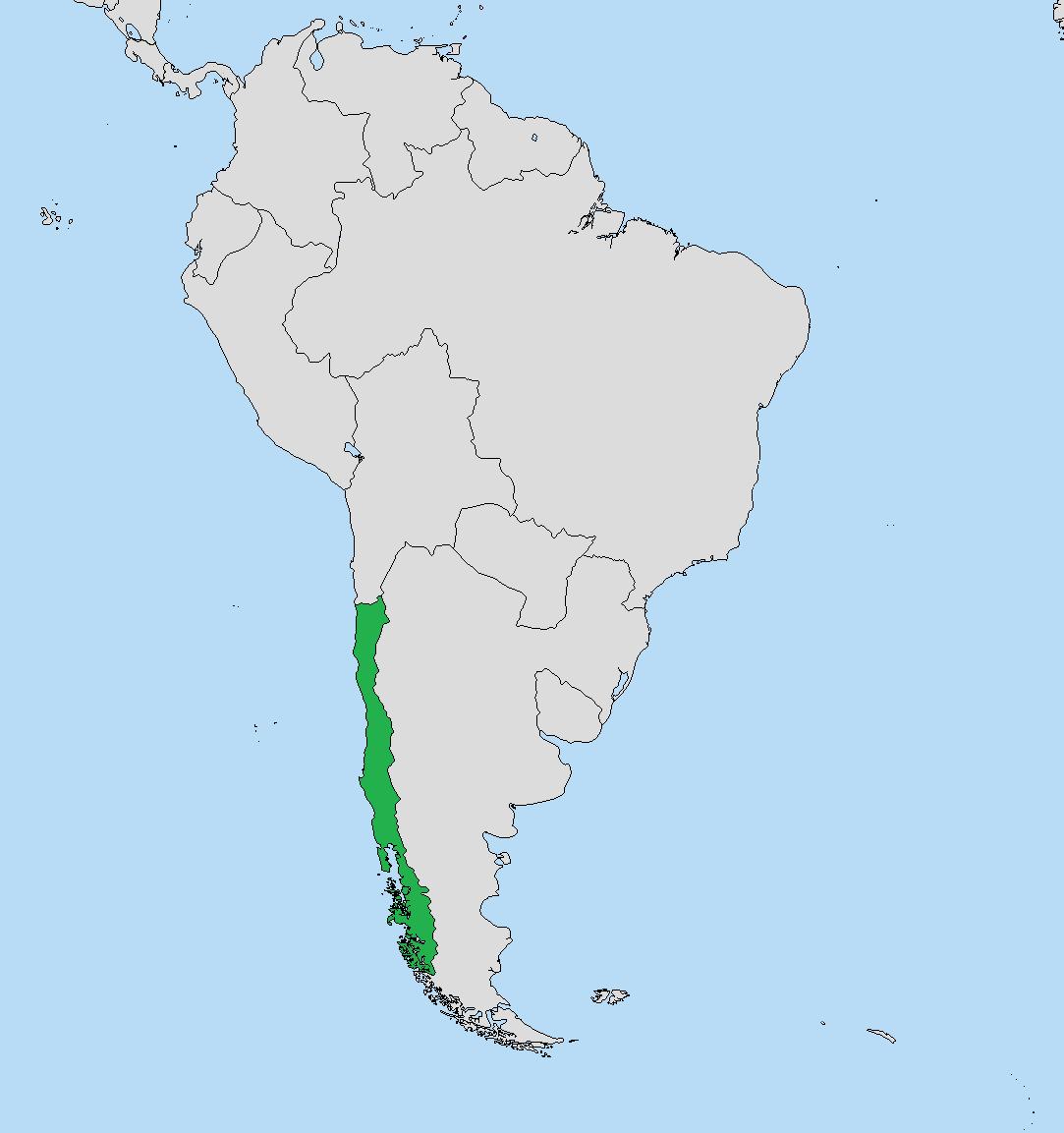 Chile (Gran Imperio Alemán)