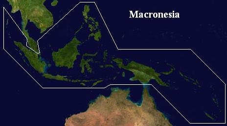 Macronesia (Vegetarian World)