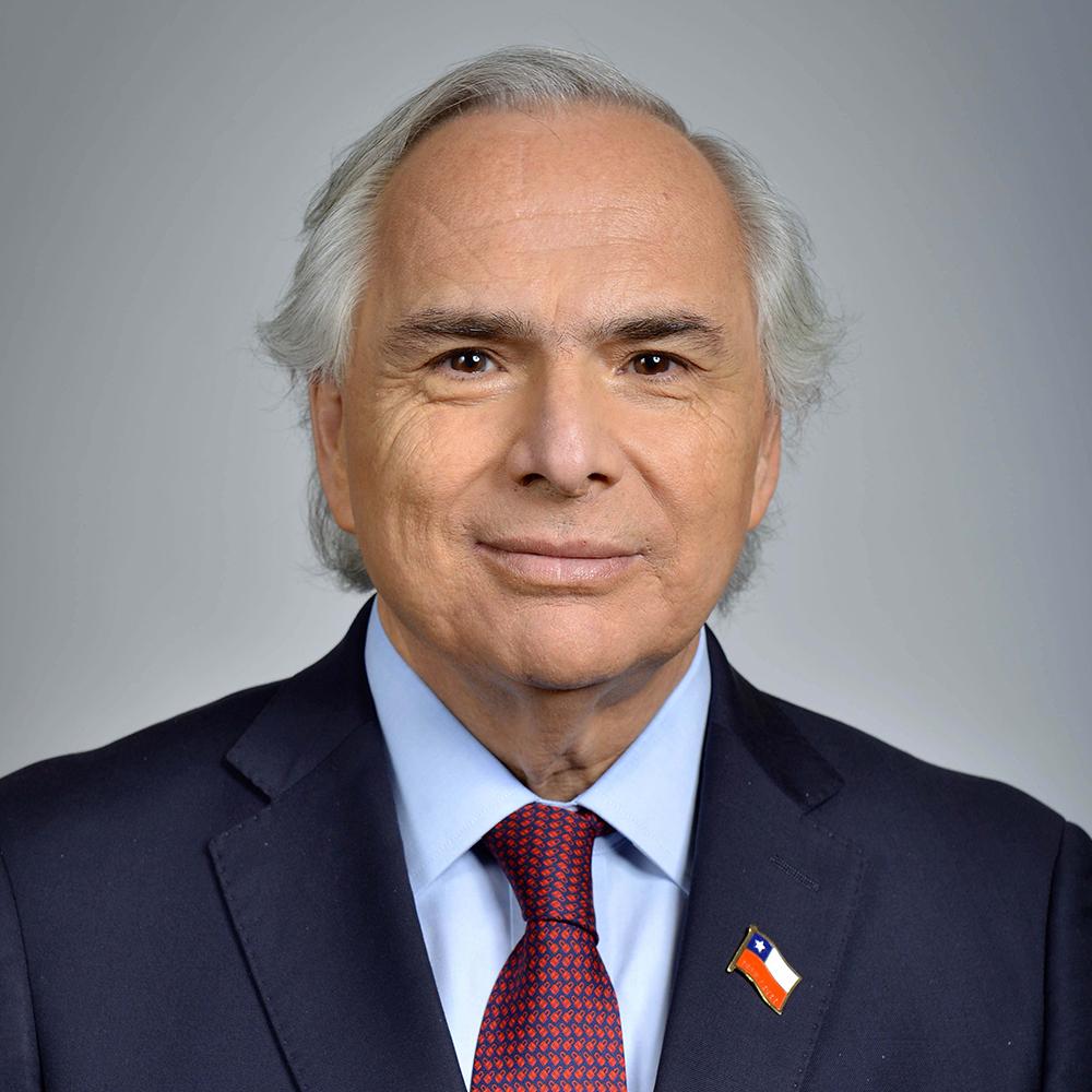 Andrés Chadwick (Chile No Socialista)