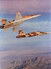 F5-operation karkok.jpg