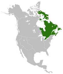 Location of Kingdom of Vinland