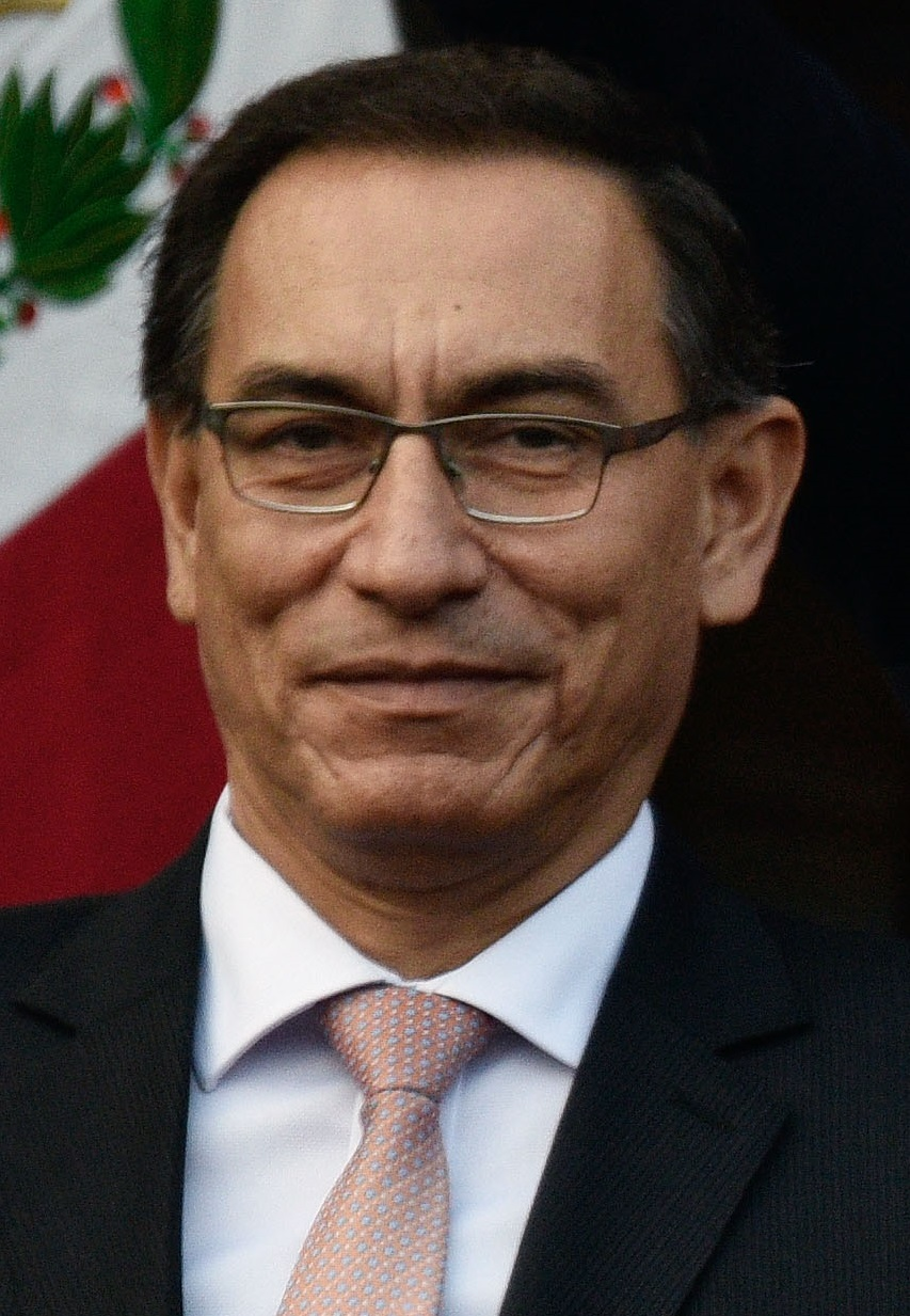 Elecciones Generales de Perú de 2020 (Chile No Socialista)