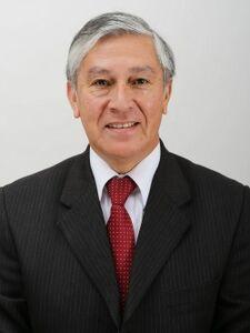 David Sandoval (Chile No Socialista)