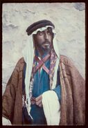 Types and character, etc. Bust of a Bedouin LOC matpc.23091