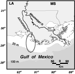 Map showing location of Rivers in southern Louisiana and the new Mississippi River Delta