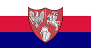 Flaga RPSZN.png