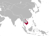Kingdom of Champa (A Different History)