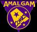 Amalgam Database