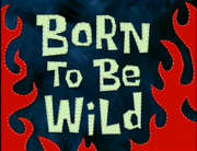 Born to Be Wild.png