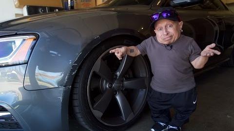 I Crashed My Car! Verne Troyer