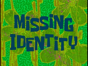 Missing Identity.png