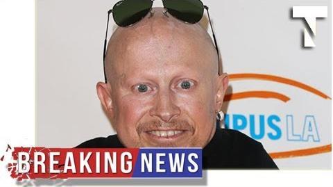 BREAKING Verne Troyer dead - Austin Powers mini me actor dies aged 49 by Top News