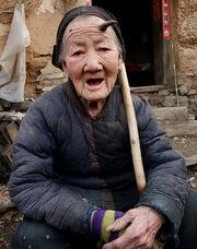 Zhang Ruifang.jpg