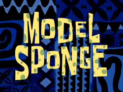 Model Sponge.png