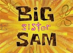 Big Sister Sam.png