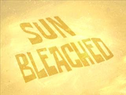 Sun Bleached.png