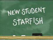 300px-New Student Starfish.jpg
