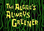 The Algae's Always Greener.png
