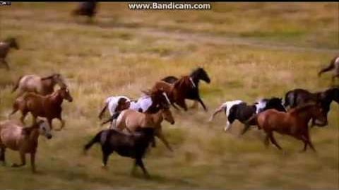 The Amazing Race Canada Race 5 intro