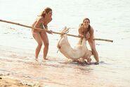 Jaime Cara Carry Pig
