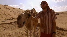 Here Comes the Bedouin!