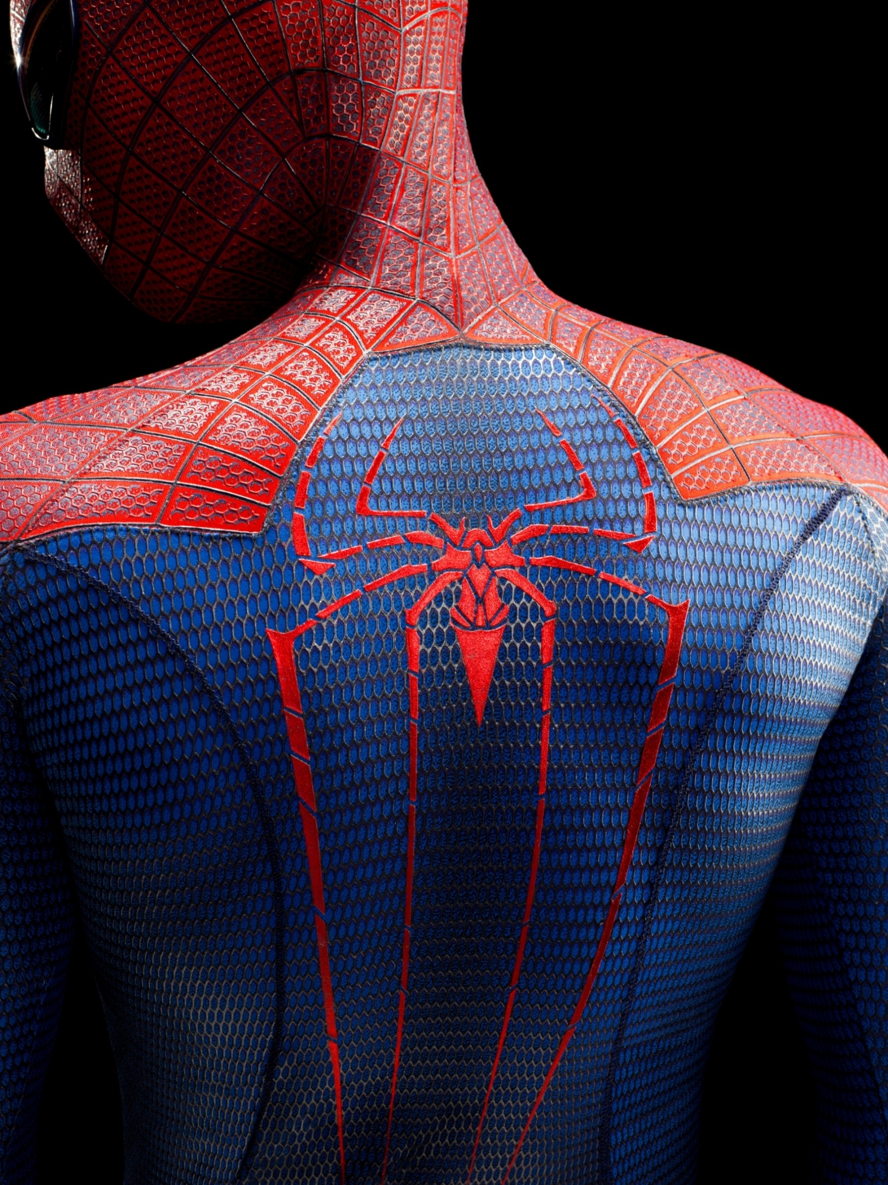 The-Amazing-Spider-Man 102d06bb.jpg