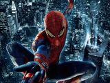 Spider-Man Suit