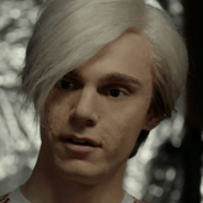 AndyAHSCult