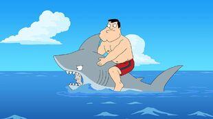 Shark?!.jpg