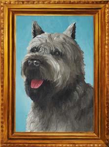 Argos (dog)