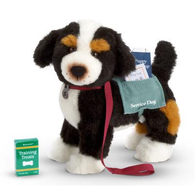 Nicki's Dog-in-Training
