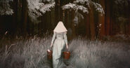 American-horror-story into-the-woods-image