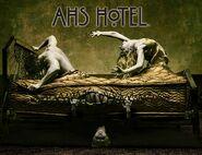 AHS Hotel Promo 06