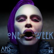 Apo1week