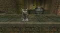 Water Logged - Cheshire Cat