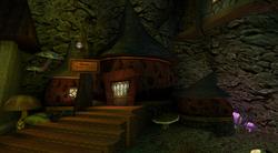 Rana Mushroom Shop.png