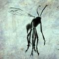Samurai Ink Wasp render.png