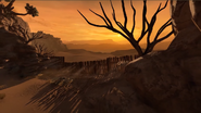 Rebirth desert view