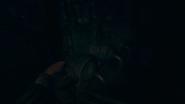 Cellar aamfp 03