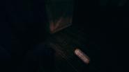 Cellar aamfp 04
