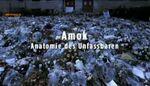 Amok - Anatomie des Unfassbaren.jpg