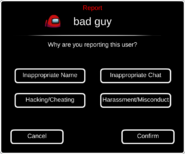 Report account interface