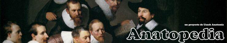 Banner anatopedia.jpg
